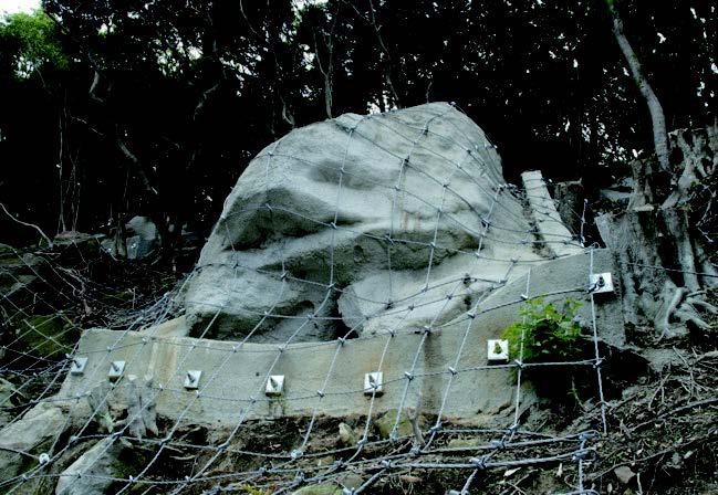 落石トメタロー(枠内は施工前)
