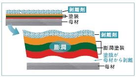 塗膜の膨潤剥離模式図