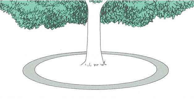 衰弱木に対するメネデールの使用方法