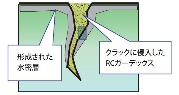 クラック周辺にRC ガーデックスが浸透する様子(徐々に水密層を形成)