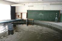 教室に設置されたトラフグの水槽