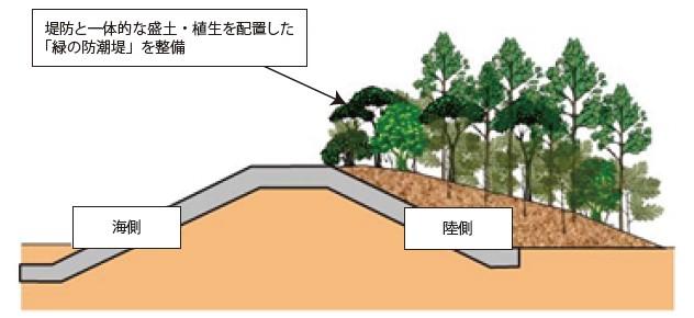 図-4 緑の防潮堤