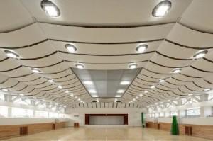 太陽工業が膜天井にメタリックな光沢感を表現する『シルフィーファインAw』を発売