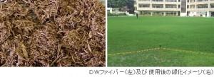 大建工業が土壌改良材『DWファイバー』を発売