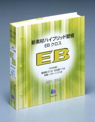 2011-2013 EBクロス