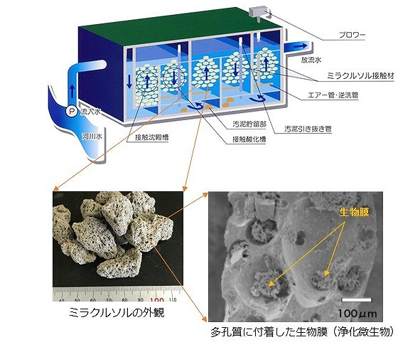 発泡廃ガラス(ミラクルソル)水質浄化システム